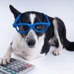 Timothy Phillips' Under-Utilized Pet Tax Deductions
